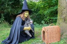 Toto and The Wicked Witch