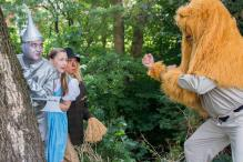 Lion and Scared Gang