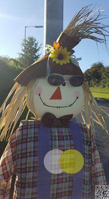 Scarecrow in the Sun